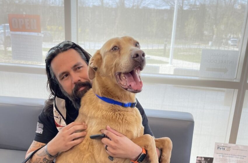 Dog Reunited With Family After 4 Years