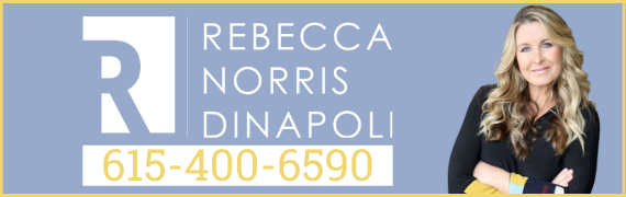Rebecca Dinapoli Header Banner
